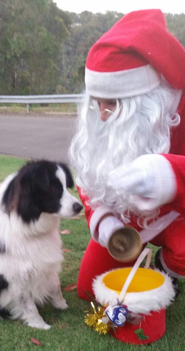 Kadie-Santa