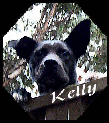 Kelly.jpg
